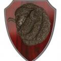 Timber Shield P32