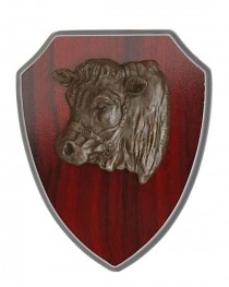 Timber Shield Murray Grey Bull