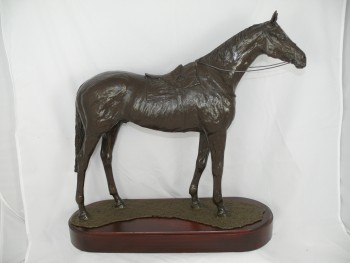 Thoroughbred Racehorse MP94