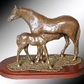Welsh Mountain Mare & Foal